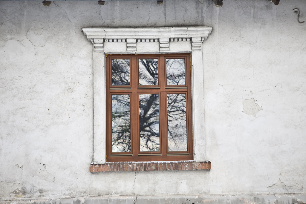 MUROWANY DWÓR W GOSZYCACH, fot. M. Łuczak (2010) ©